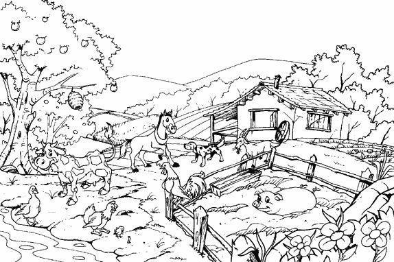 Dibujo de granja para colorear